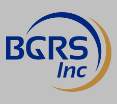 BGRS Inc   Stationary Dust Collectors